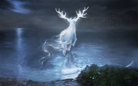 You Can Now Discover Your Patronus On Pottermore! - AmReading