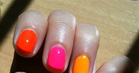 Other Wild Things: Models Own: Hedonist, Bubblegum, Fluro