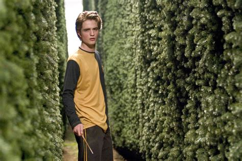 Unsung heroes: Cedric Diggory - Pottermore